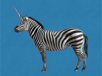 Zebra-Corn.001